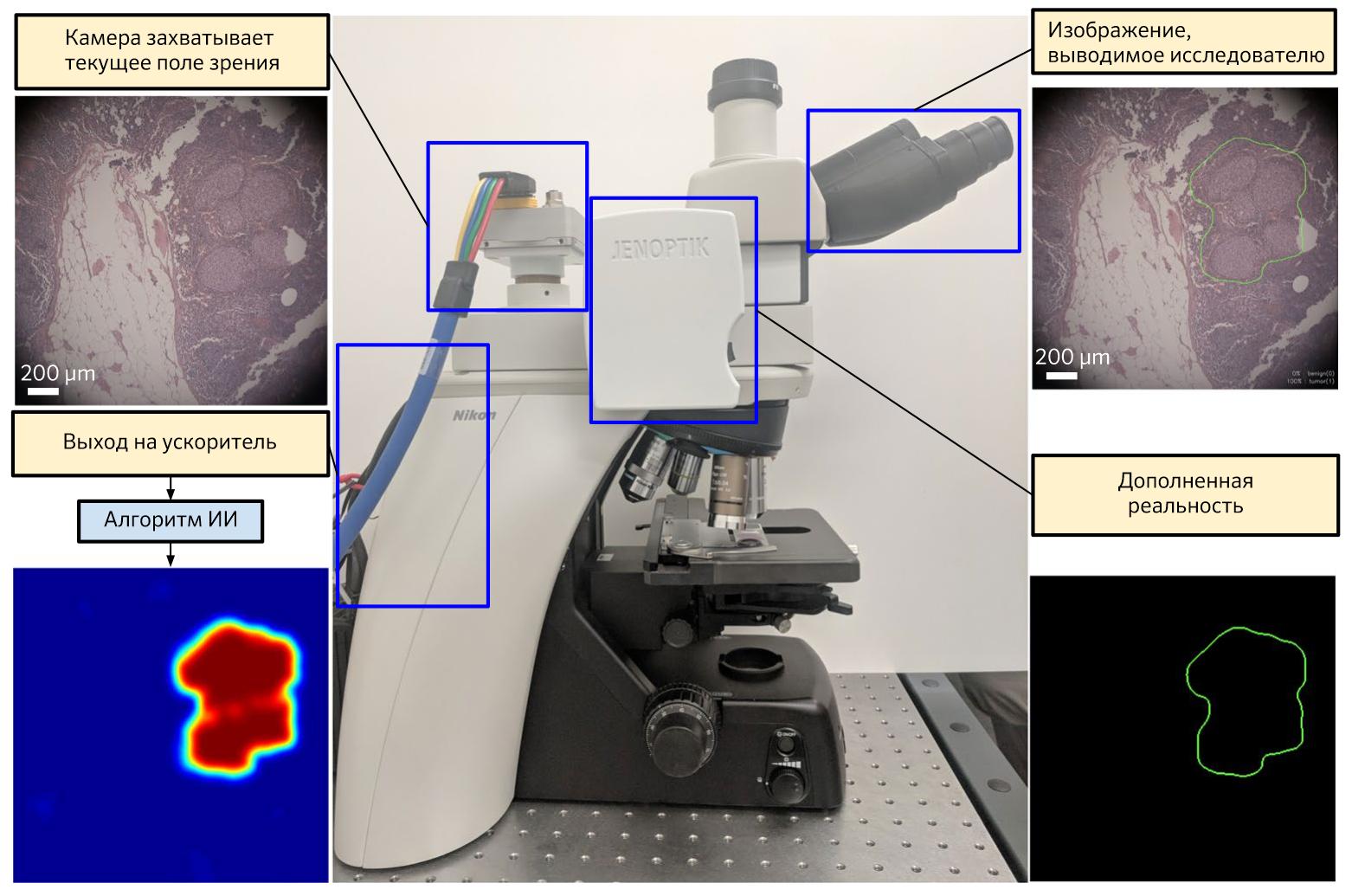 Дополненная реальность в микроскопии